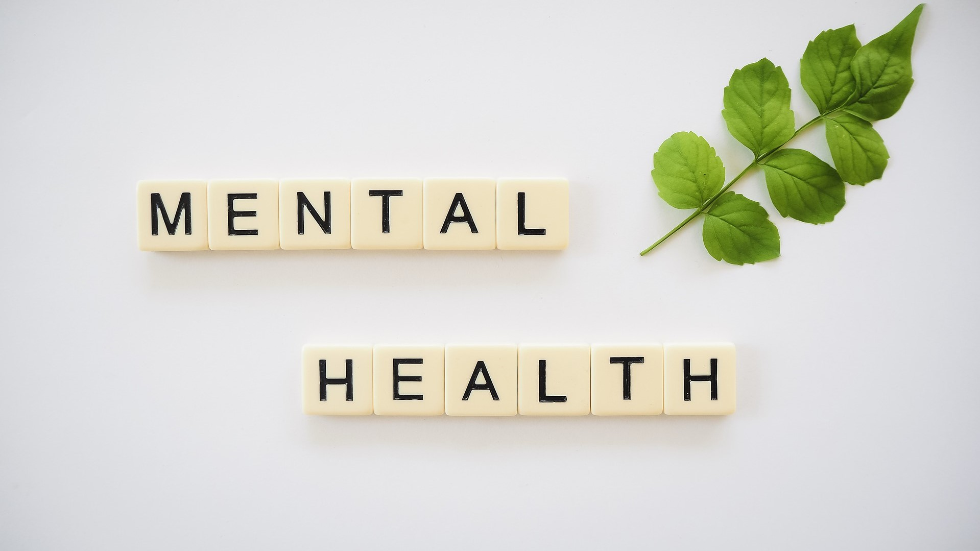 letter tiles spelling out Mental Health on a white background with a small decorative branch off to the top right